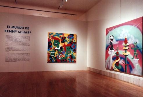 Museo de Arte Contemporaneo